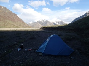 Camping in Denali